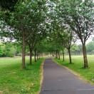 Morning walk on beautiful path at Herbert park, Dublin