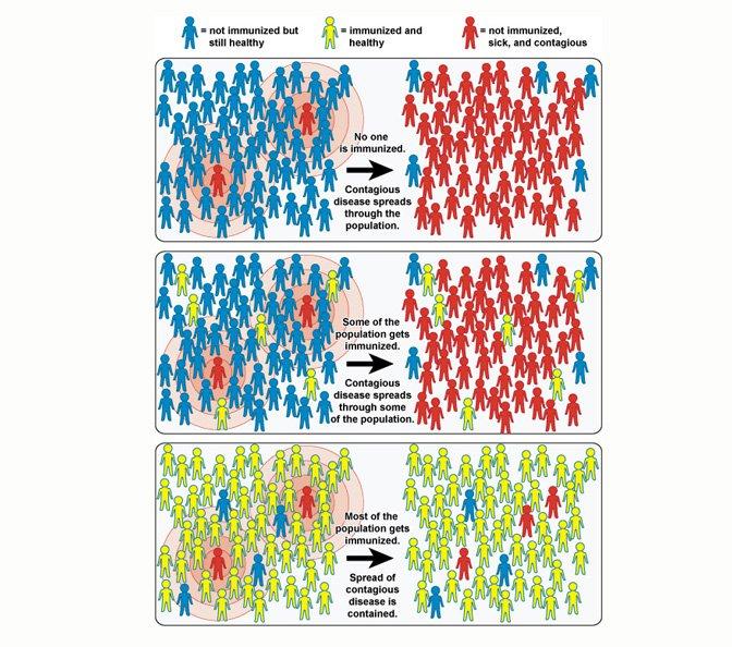herd-immunity-01.width-800